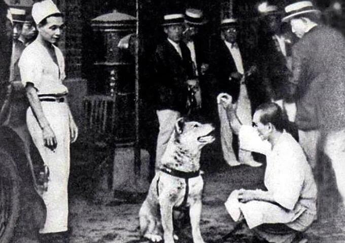 Người dân Odeta thay nhau chăm sóc chú chó tội nghiệp...