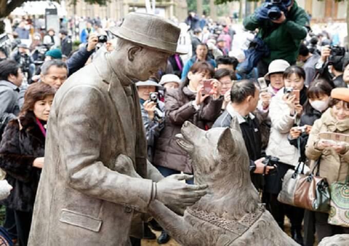 Chú chó Hachiko cuối cùng cũng được đoàn tụ với chủ của mình - giáo sư Ueno. Họ chắc hẳn sẽ có một cuộc sống thật hạnh phúc trên thiên đàng