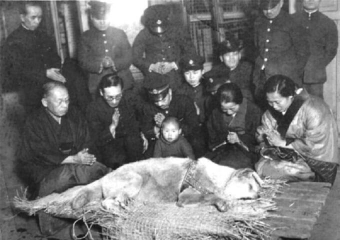 Giờ phút cuối cùng của chú chó Hachiko. Có lẽ, chú sẽ được gặp chủ nhân của mình ở nơi nào đó trên thiên đàng. Nơi không có gì có thể chia cắt họ được nữa...