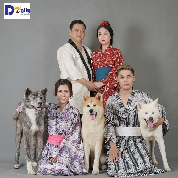 Bộ ba chó Aktia Inu nhập khẩu biểu tượng của Dogily Petshop. Có đủ các màu vàng trắng, vện và trắng tuyết