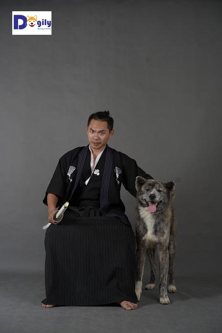 Chó Akita Inu ngày nay có nguồn gốc từ cực bắc đảo Honsu. Ban đầu chúng được sử dụng trong các cuộc săn gấu và các loài thú lớn khác