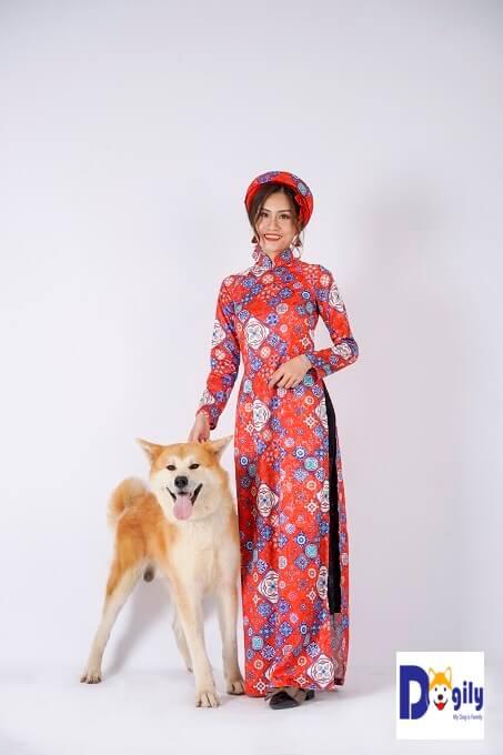 Bạn nên cẩn thận với những tin rao bán chó Akita giá rẻ, bán chó Akita 600 nghìn 1con. Không thể mua được chó Akita thuần chủng với mức giá trên. Chỉ có thể là lừa đảo hoặc bán chó lai tạp.