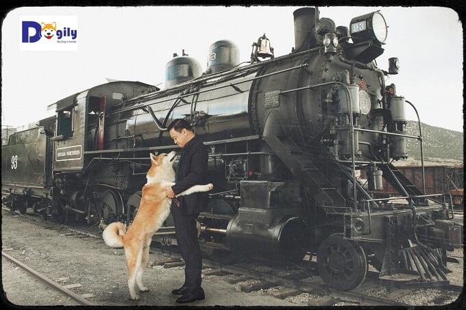 Hình ảnh tái hiện cảnh chú chó Hachiko đón giáo sư Ueno tại nhà ga Shibuya.