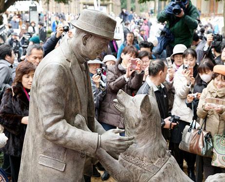 Chú chó Hachi cuối cùng đã được đoàn tụ với chủ của mình sau gần 90 năm cách xa