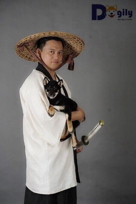 Chó San'in Shiba thường có màu đen. Shiba Inu thường được các thợ săn thời xưa mang theo bên mình trong các cuộc săn thú nhỏ