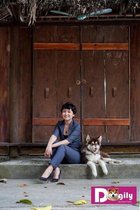 Giá bán chó Alaska phụ thuộc vào nhiều yếu tố như nguồn gốc, màu sắc, độ tuổi. Hình trên: Mrs Vương Trang (Co-founder của Dogily Petshop) cùng một chú chó Alaska đẹp thuần chủng.