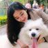Hướng dẫn cách nuôi và chăm sóc chó samoyed hiệu quả nhất