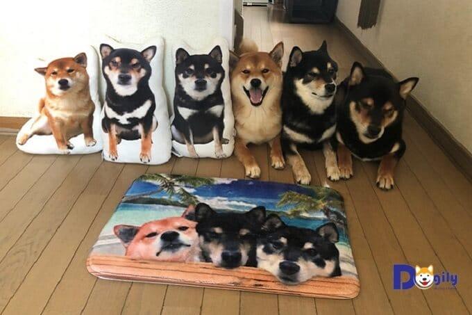 Gian hàng online của ba chú chó Shiba Inu Hinaosora bán các đồ như gối nhồi bông, đệm, túi xách có in hình dễ thương của những anh chàng này.