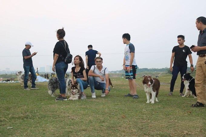 Tại bãi giữa sông Hồng, Hà Nội.