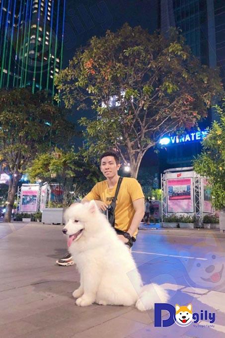 Sam là người bạn lý tưởng khi chạy bộ, dạo phố. Ảnh: Anh Quang Huy và chú chó Samoyed mua tại Dogily Petshop Phú Nhuận, Tphcm.
