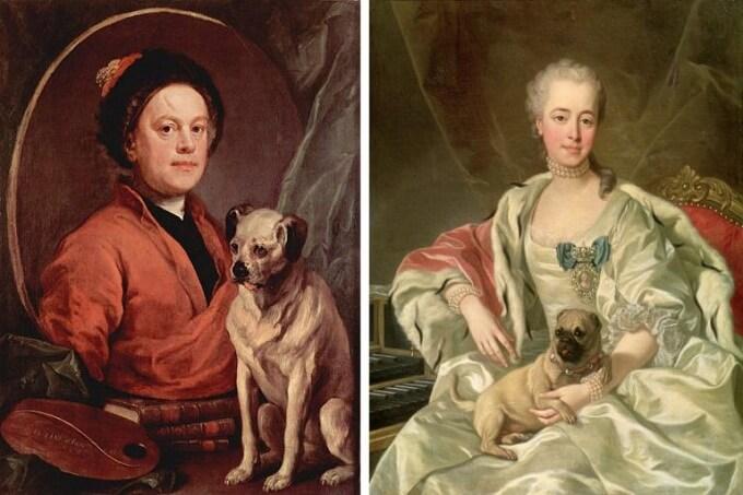 Chó_Pug_trong_tác_phẩm_hội_họa_nổi_tiếng_về_gia_đình_vua_William_III