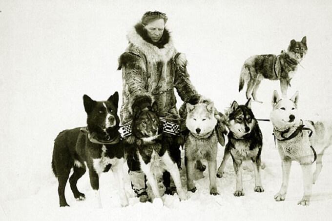 Leonhard Seppala và đàn chó husky anh hùng huyền thoại
