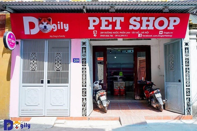 Một cửa hàng của Dogily Petshop tại Tây Hồ, Hà Nội. Bạn có thể dễ dàng giao dịch mua bán chó Xúc xích Dachshund cả ở Tphcm và Hà Nội hoặc online.