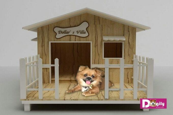Mẫu chuồng chó bằng gỗ dành riêng cho dòng chó siêu nhỏ như phốc hươu, pomeranian, teacup poodle., chiihuahua...