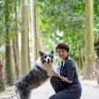 Hình ảnh chó chăn cừu Collie biên giới (border collie) - Dogily Petshop