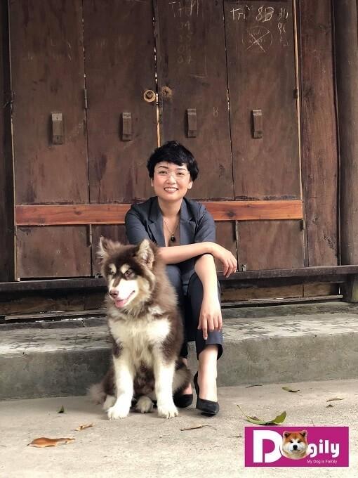Chú chó Alaska tên Sói trong một lần cùng mẹ Trang đi dã ngoại