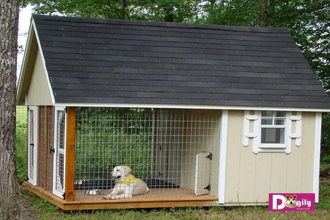 Mẫu chuồng chó bằng gỗ dành chó chó kích thướng lớn như Akita Inu, Labrador, Golden Retriever