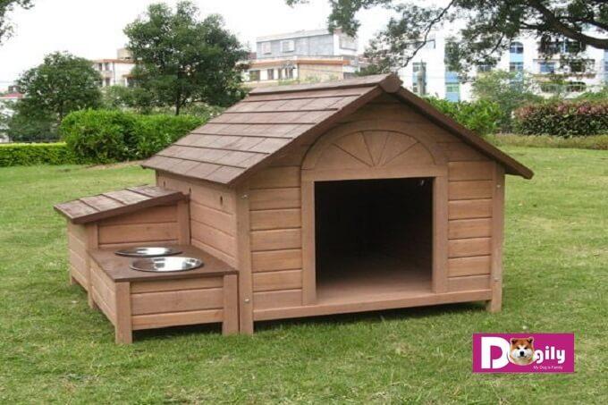 Mẫu chuồng chó bằng gỗ dành cho chó nhỡ như Border collie, shiba inu, samoyed, husky