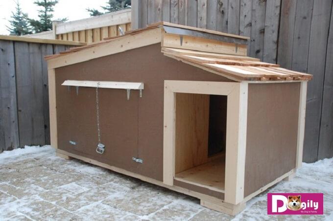 Mẫu chuồng chó bằng gỗ khá ấm cúng dành cho các giống chó có kích thước trung bình như Bulldog, Boxer,...