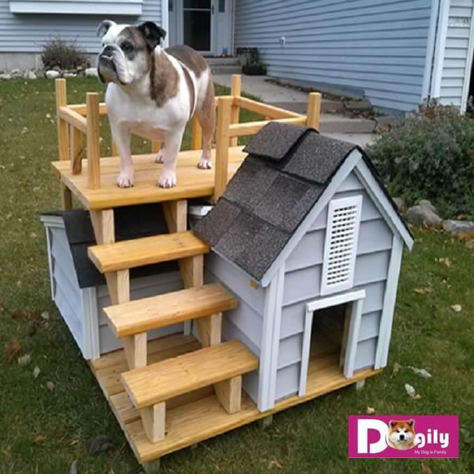 Mẫu chuồng chó bằng gỗ thích hợp cho chó nhỏ và trung bình như Bull Pháp, bullldog, Pomeranian..