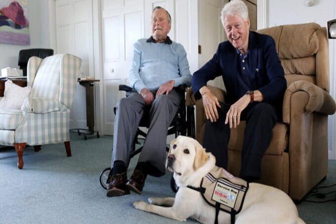 Chú chó Sully thuộc biên chế của chương trình VetDog. Được huấn luyện để hỗ trợ các cựu binh Hoa Kỳ bị khuyết tật trong cuộc sống thường ngày