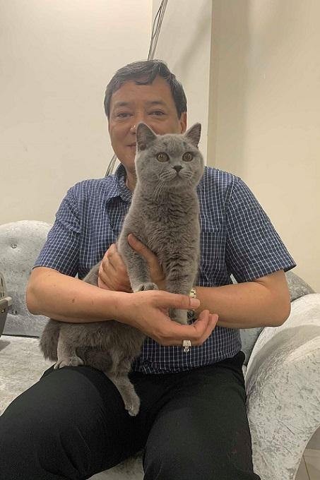 Ảnh: Khách hàng mua mèo Anh lông ngắn xám xanh nhập khẩu tại cửa hàng Dogily Petshop quận 1.