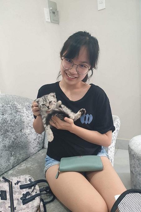 Khách mua mèo tabby tại Dogily Petshop