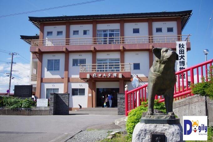 Hình ảnh Bảo tàng giống chó Akita Inu tại Odate. Nơi lưu giữ những hiện vật về giống chó này và chú chó Hachiko.