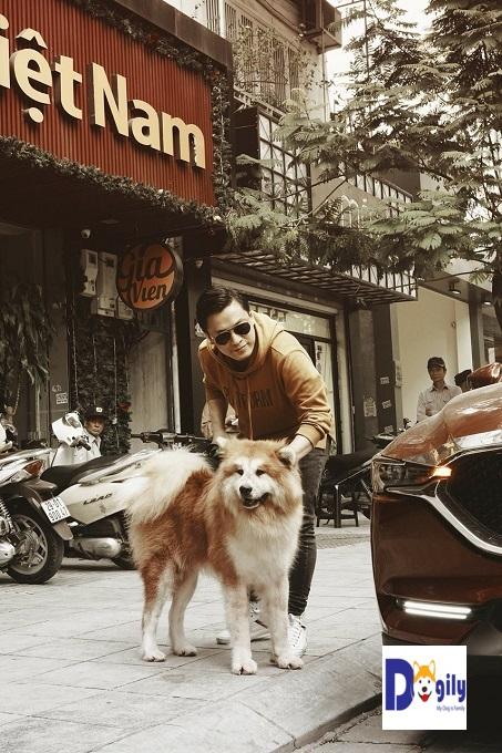 Anh Hai Lam Trường bên chú chó Akita long coat Songoku nhập khẩu từ châu Âu