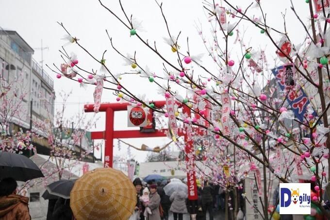 Lễ hội Amekko-ichi tại thành phố Odate. Rực rỡ hoa anh đào và chó Akita Inu