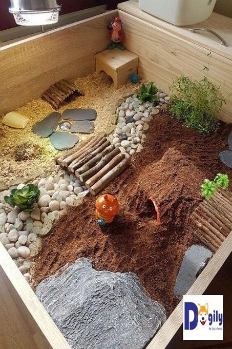 Một mãu chuồng đầy mầu sắc và trẻ trung với tông màu vàng và nâu đất. Thích hợp với nhà có trẻ em. Để không gian nuôi rùa cảnh sẽ thu hút chúng chơi cùng rùa cưng.