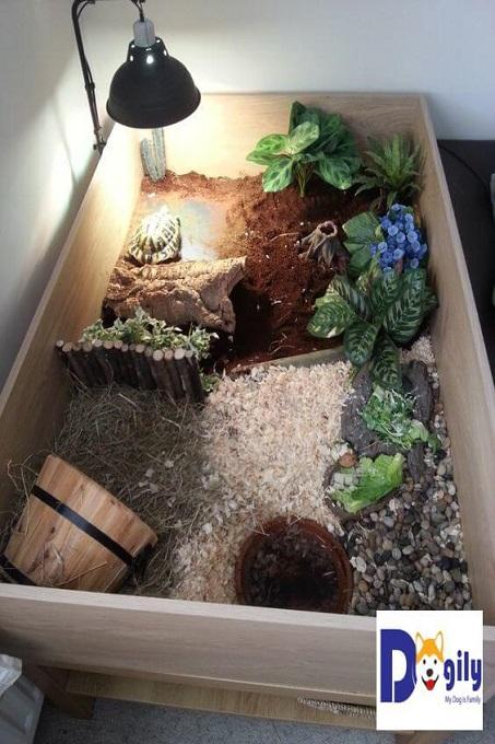 Mẫu chuồng nuôi rùa này thích hợp đặt ở trong nhà. Chính vì đặt ở nơi không có ánh mặt trời. Bạn cần phải thắp đèn uvp 12-15 h mỗi ngày. Để rùa có thể tổng hợp canxi và trao đổi chất, phát triển khỏe mạnh.