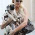 Nuôi chó Pug khỏe mạnh – Những chia sẻ từ Dogily Kennel