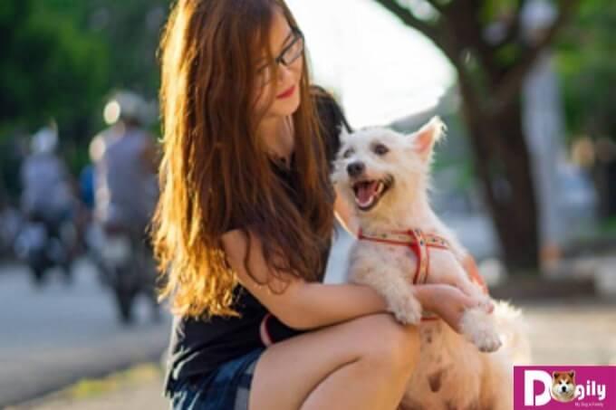 ngay từ lúc có triệu chứng ta cần có cách điều trị hiệu quả để cún cưng luôn khỏe mạnh