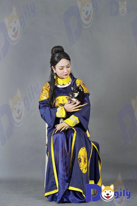 Ảnh: Ms Vương Trang cùng một bé Shiba Inu màu black & Tan cực hiếm nhập Thái Lan.