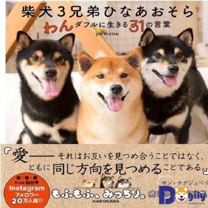 Ba nhóc sở hữu 1 website bán hàng online nổi tiếng