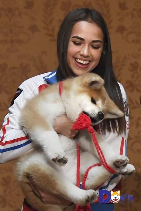 Nhà vô địch trượt băng nghệ thuật Olimpic Alina Zagitova và chú chó Akita Inu con của mình.