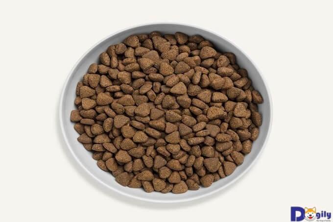 Thức ăn dạng khô cho mèo