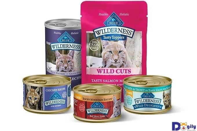 Thức ăn đóng hộp cho mèo nhiều dinh dưỡng hơn dạng khô