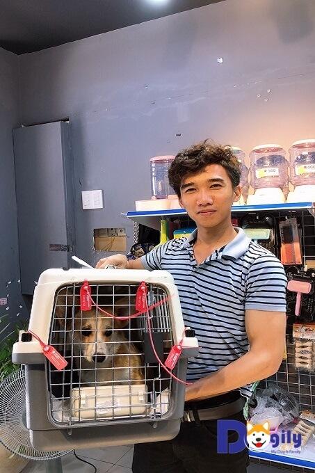 Bạn hoàn toàn yên tâm khi order chó Corgi nhập khẩu từ Dogily Petshop với giá bán tốt nhất trên thị trường.
