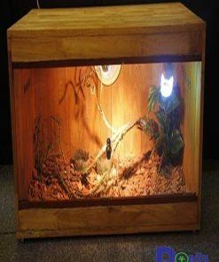 bể gỗ dành cho tất cả các loại bò sát, mầu sắc hài hòa