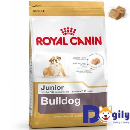 THỨC ĂN CHO CHÓ ROYAL CANIN JUNIOR BULLDOG 1 Kg