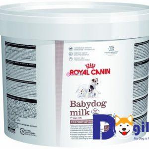 SỮA CHO CHÓ CON ROYAL CANIN BABYDOG MILK Sữa cho chó con mới sinh đến 1 tháng tuổi giúp chó con tăng trưởng hài hòa, giàu DHA, an toàn cho hệ tiêu hóa, với dưỡng chất dồi dào và cân bằng.