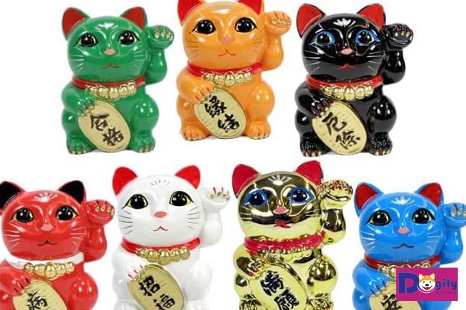 Những chú mèo tam thể may mắn của Nhật Bản