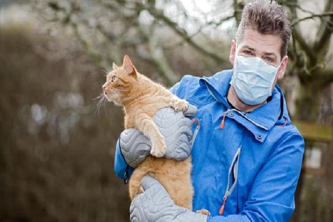 Dị ứng mèo có gây tử vong chết người không