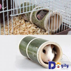 Vệ sinh ngôi nhà, đồ chơi và chuồng trại cho Hamster