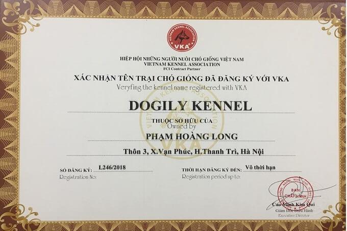Giấy chứng nhận thành viên Hiệp hội những người nuôi chó giống tại Việt Nam (VKA) của Dogily Petshop.
