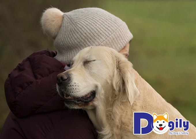 Chú chó dễ thể hiện tình cảm với chủ nhân