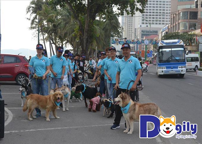Cuộc thi chó ở Nha Trang