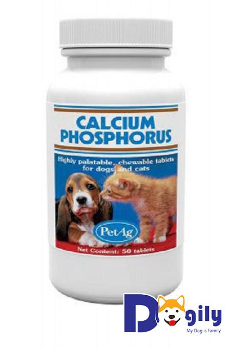 Sử dụng Calcium Phosphorus để bổ sung canxi cho cún yêu